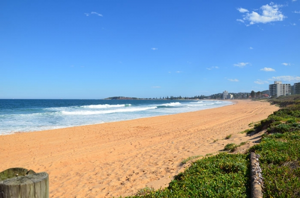 Narrabeen Beach Manly Northern Beaches Sydney Australia | Credits Manly .com